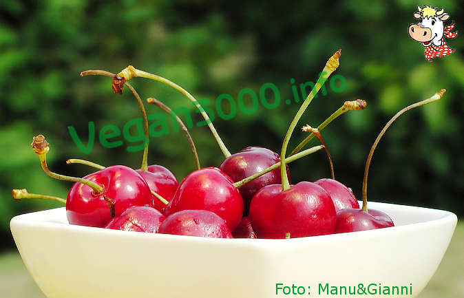 Foto numero 1 della ricetta Focaccine alle ciliegie