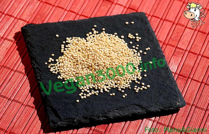 Foto numero 1 della ricetta Quinoa en Salpicon