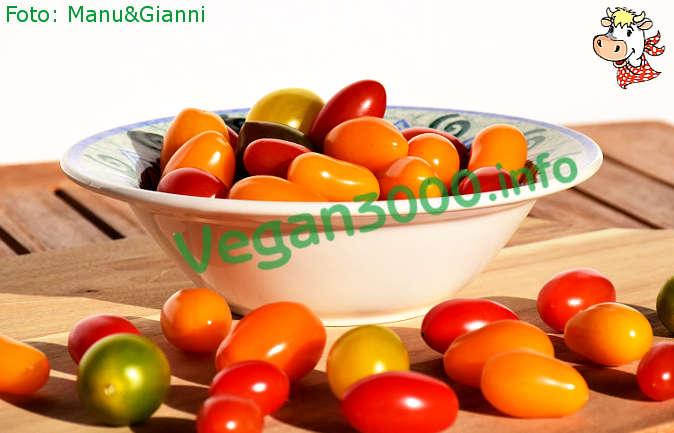 Foto numero 1 della ricetta Torta salata di pomodorini