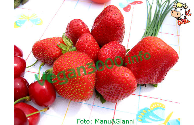 Foto numero 1 della ricetta Gazpacho with strawberries