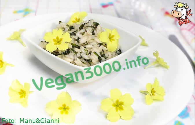 Foto numero 1 della ricetta Risotto di primavera con primule e tarassaco