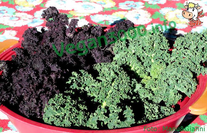 Foto numero 2 della ricetta Tofu-kale cannelloni