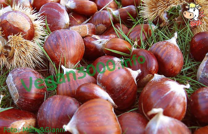 Foto numero 1 della ricetta Yule log with chestnuts