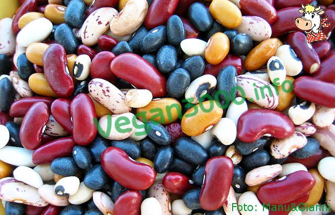 Foto numero 1 della ricetta Baked beans