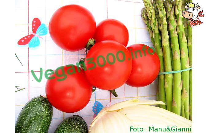 Foto numero 1 della ricetta Pomodori alla griglia
