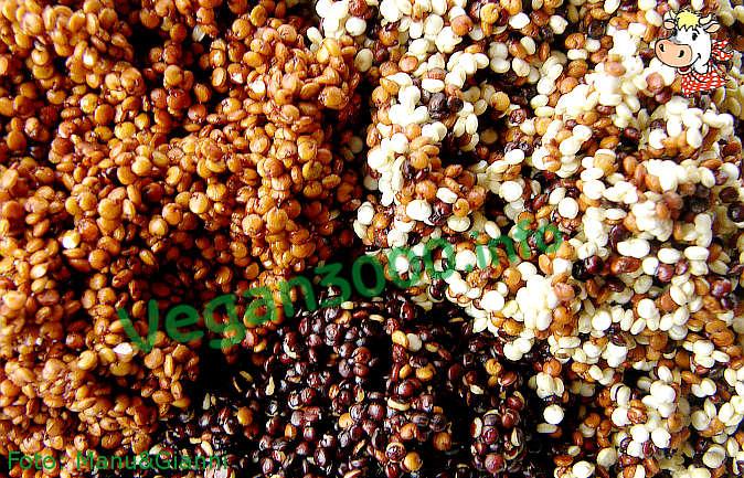 Foto numero 1 della ricetta  Aztec sauce with quinoa