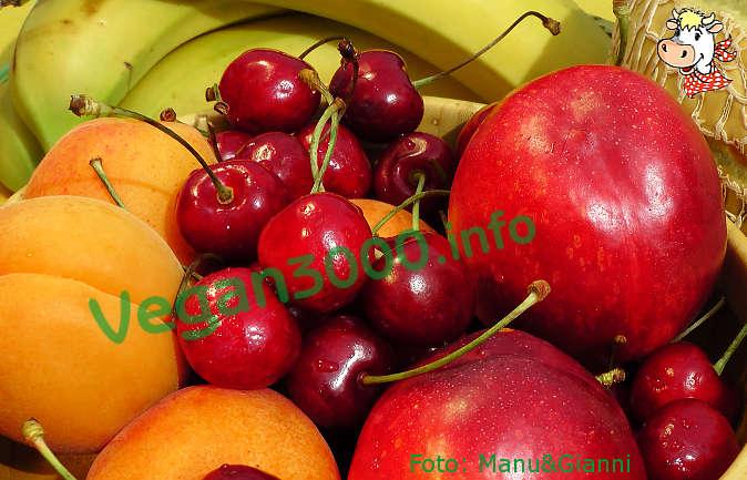 Foto numero 1 della ricetta Fruit juice granita