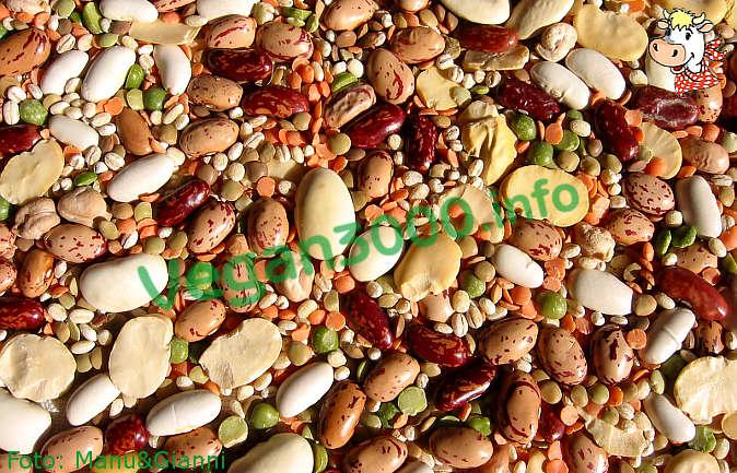 Foto numero 1 della ricetta Pasta with beans