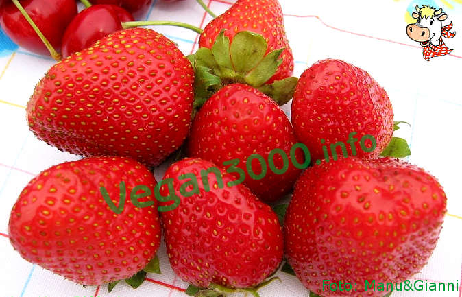 Foto numero 1 della ricetta Strawberry tofu