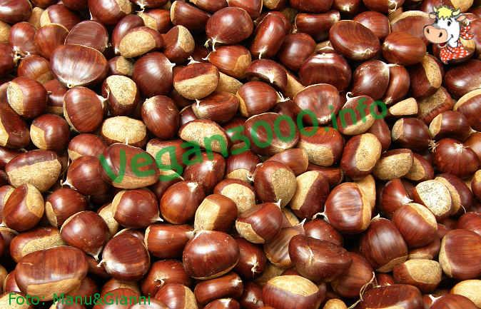 Foto numero 1 della ricetta Chestnut pâté