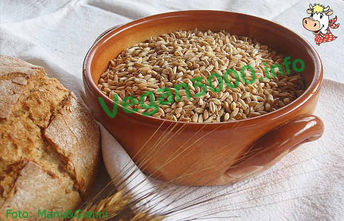 Foto numero 1 della ricetta Pane (fatto in casa) - (2)