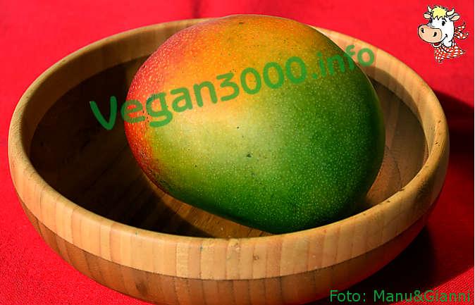 Foto numero 1 della ricetta Riso dolce con mango